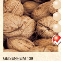 geisenheim 139 orah-sadnice-agrokalemplod_29